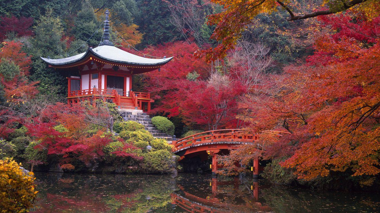 Фото бесплатно пагода, кіото, японія, дайго, річка, дерева, червоний, пейзажи, пейзажи