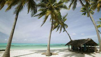 Бесплатные фото остров,берег,пальмы,океан,волны,постройка,пейзажи