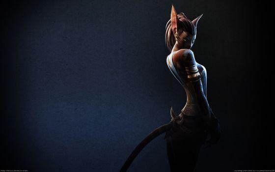 Photo free archeage online, cat, ferre
