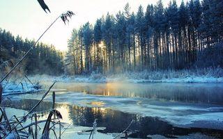 Бесплатные фото пейзаж,река,зима,снег,деревья