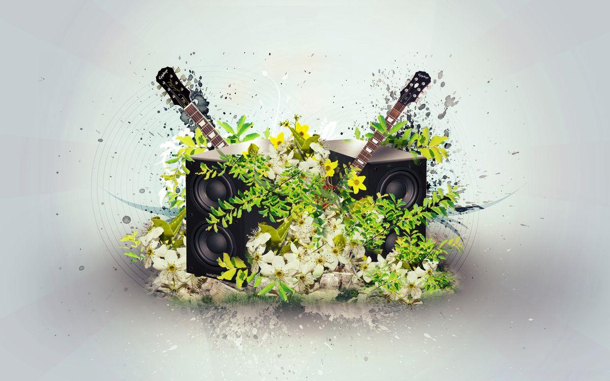 Фото бесплатно колонки, цветки, лепестки - на рабочий стол
