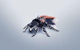 Фото бесплатно муха, робот, крылья, лапы, голова, металл, фантастика