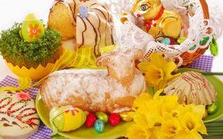 Бесплатные фото пасха,яйца,цветные,выпечка,цветы,корзинка,кролик