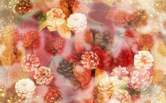 Бесплатные фото цветы,листья,шишки,дымка,блестки,фон,разное