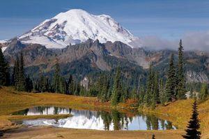 Фото бесплатно пейзаж, горы, лес