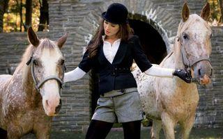 Бесплатные фото лошадь,животные,лошади,конь,кони,девушка,брюнетка