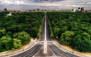 Бесплатные фото лес,парк,деревья,дорога,шоссе,фото,фонари