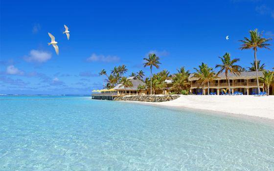 Фото бесплатно море, песок, белый, чайки, пальмы, хижина, пейзажи