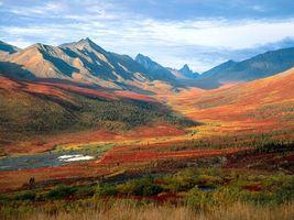 Photo free field, trees, mountains
