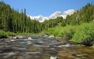 Заставки речка,лес,деревья,камни,горы,небо,природа