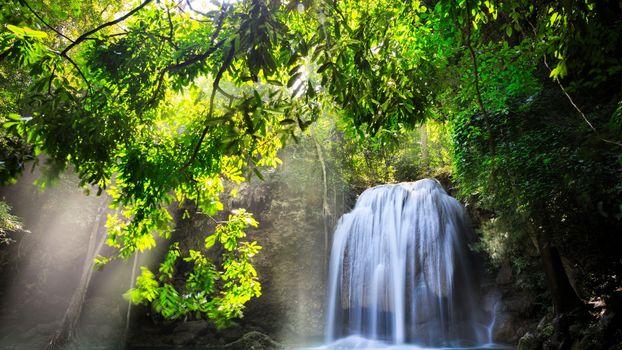 Бесплатные фото река,водопад,обрыв,корни,деревья,листва,солнце,природа