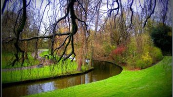 Заставки сад,парк,трава,газон,река,пруд,ивы