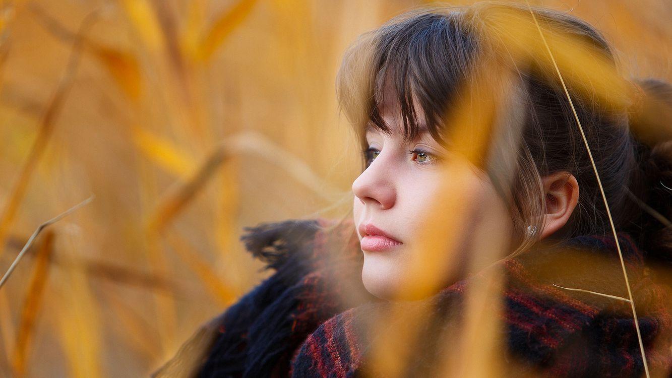 Фото бесплатно юная, личико, брюнетка, профиль, портрет, желтые, травы, девушки, девушки