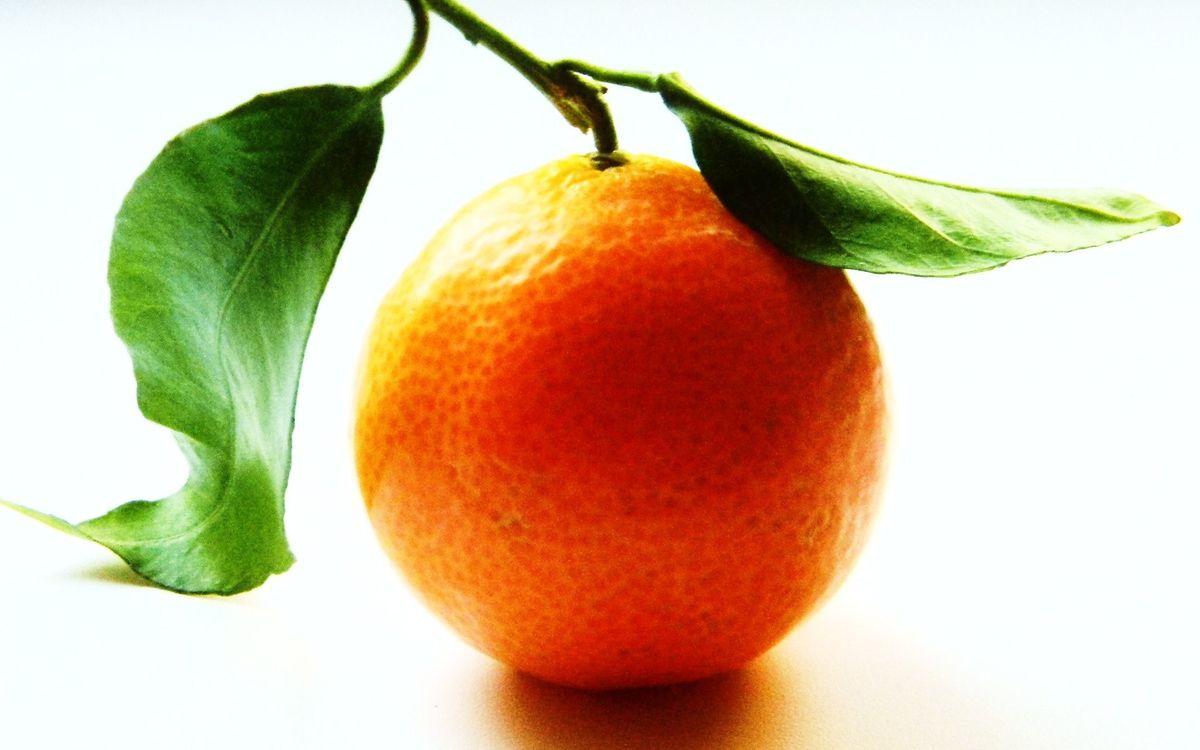 Фото бесплатно фрукт, апельсин, оранжевый, ветка, листья, зеленые, еда