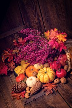 Photo free nuts, autumn composition of vegetables and fruits, basket