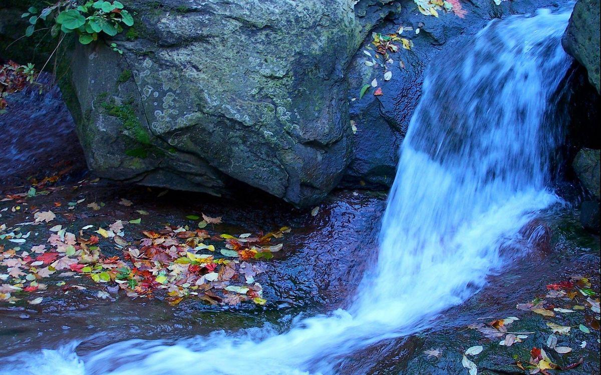 Фото бесплатно водопад, камни, листва - на рабочий стол