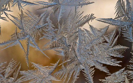 Фото бесплатно снежинки, лед, структура