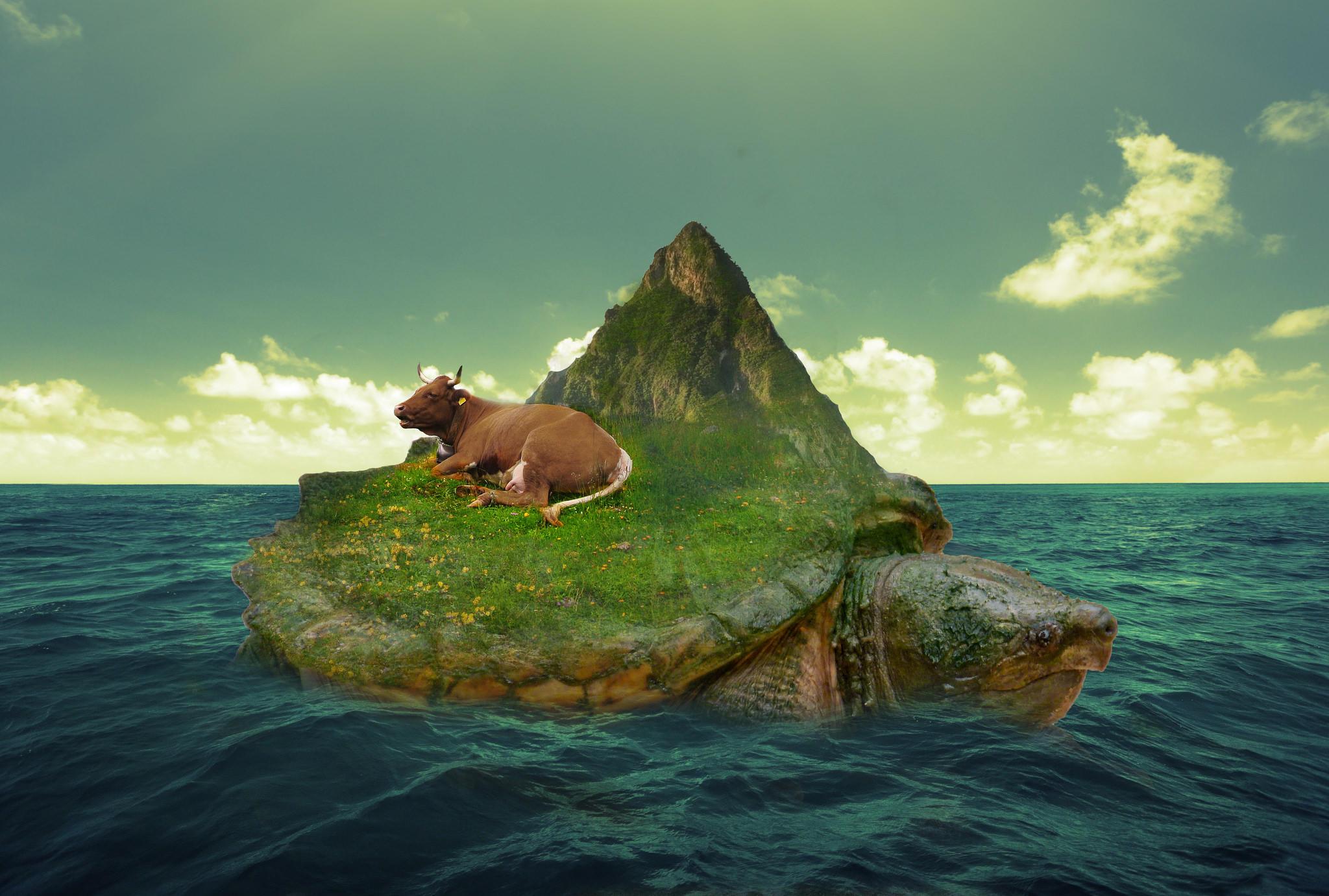 Обои море, черепаха, остров, корова