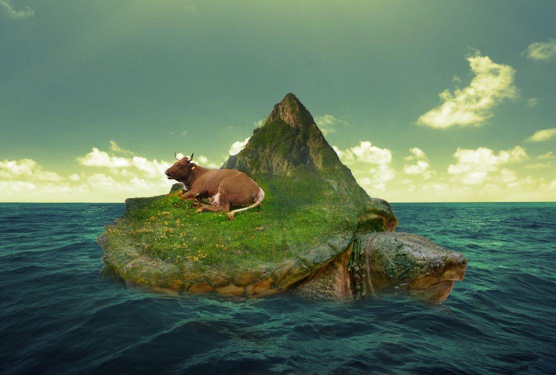 Фото бесплатно море, черепаха, остров, корова, Сюрреалистическая реальность, фантастика