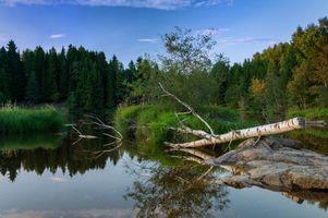 Заставки Норвегия, водоём, лес