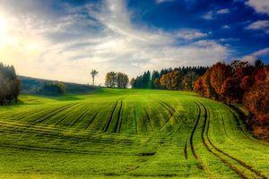 Обои Вайден, Oberpfalz, Bavaria, Германия, осень, поле, холмы, деревья, пейзаж
