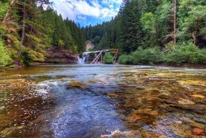 Бесплатные фото Lower Lewis River Falls,Lewis River,Washington,река,лес,деревья,пейзаж