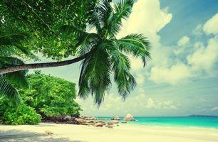 Фото бесплатно берег, океан, пляж