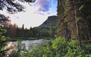 Фото бесплатно река, гора, лес, берег