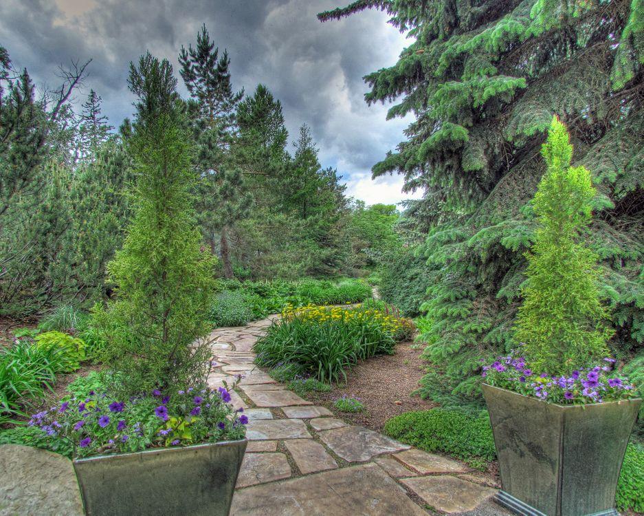 Фото бесплатно парк, деревья, дорожка, клумба, цветы, пейзаж, пейзажи