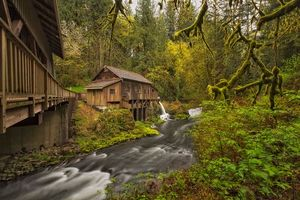 Бесплатные фото река,мельница,лес,деревья,пейзаж