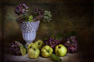 Обои ваза, натюрморт, цветы, яблоки, ретро