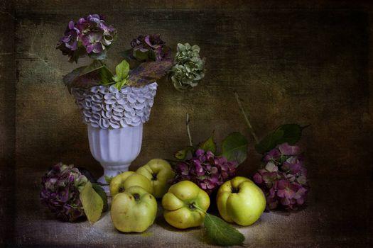 Фото бесплатно ваза, натюрморт, цветы