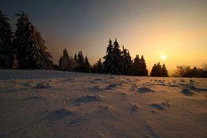 Заставки зима,закат,снег,сугробы,деревья,пейзаж