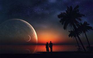 Фото бесплатно ночь, берег, пальмы