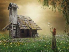 Бесплатные фото поле,туман,девушка,голубь,дом,art