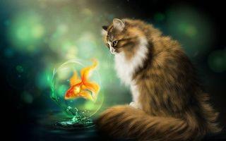 Фото бесплатно кошка, рыбка, art