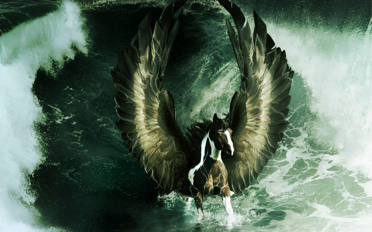 Фото бесплатно лошадь, конь, пегас - на рабочий стол