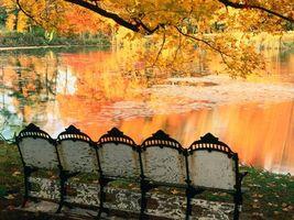 Photo free autumn park, benches, lake