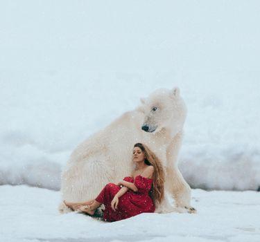 Бесплатные фото зима,девушка,модель,красотка,снег,белый медведь,полярный медведь