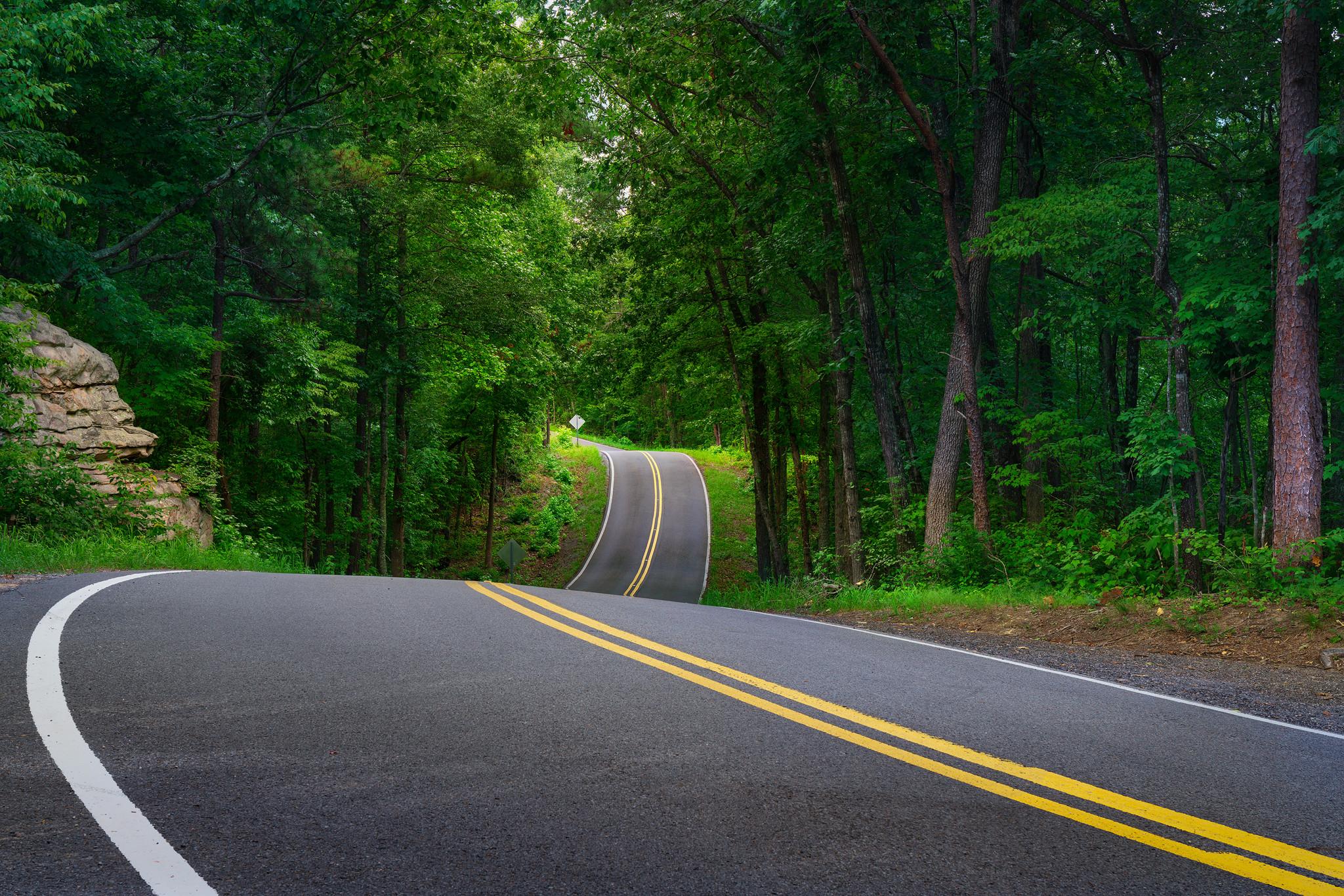 обои дорога, лес, деревья, пейзаж картинки фото