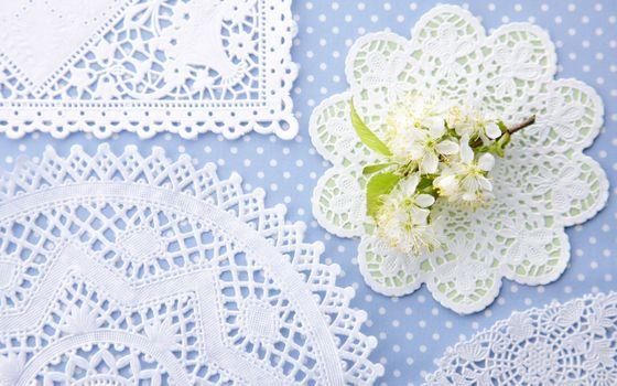 Бесплатные фото ажурные,в горошек,ветка,кружево,цветы,салфетки