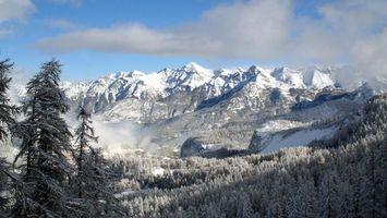 Бесплатные фото горы,снег,деревья,высоко,туман,облака,природа