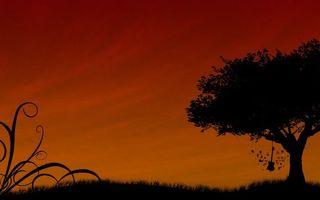 Бесплатные фото небо,красное,дерево,листья,крона,гитара,трава