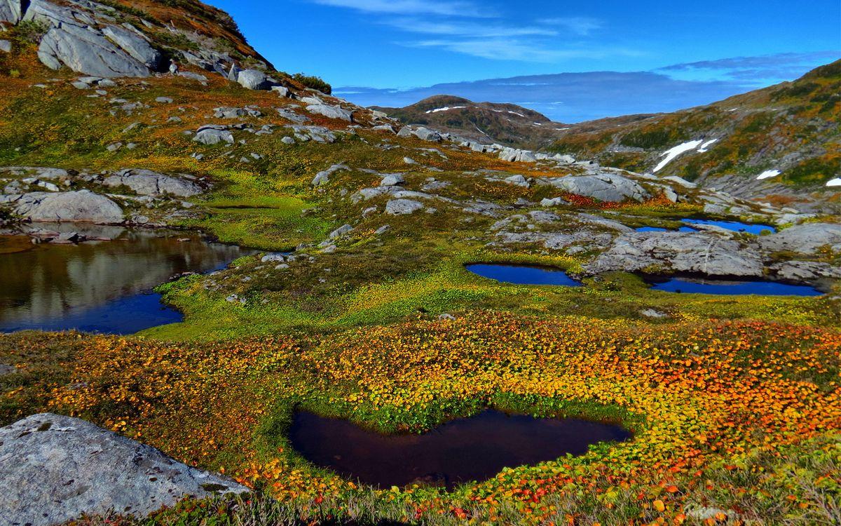 Фото бесплатно небо, облака, горы, трава, растения, цветки, лужи, вода, пейзажи, пейзажи