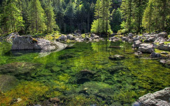 Фото бесплатно булыжник, река, камни