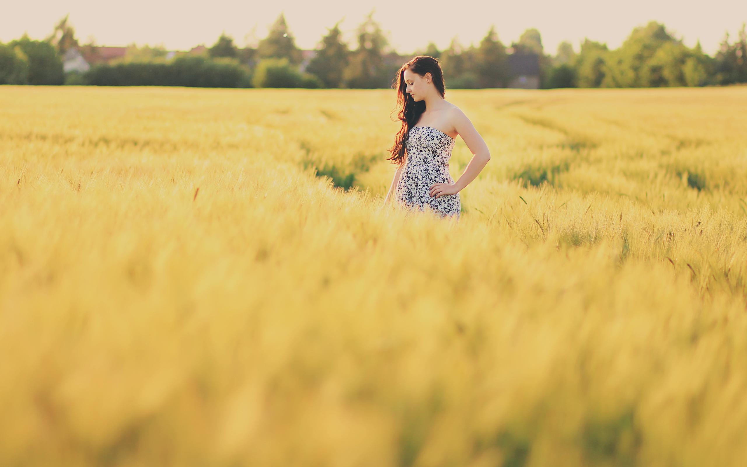 девушка поле деревья  № 3582030  скачать