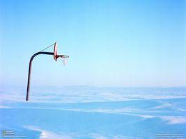 Фото бесплатно баскетбольное, кольцо, заполярье