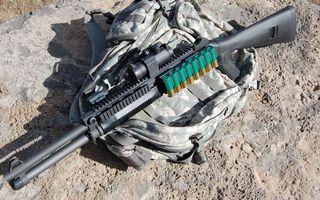 Photo free shotgun, cartridges, sight