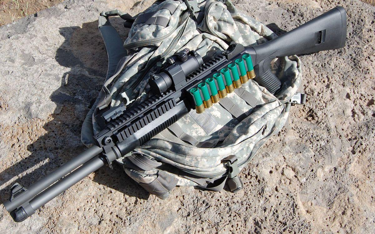 Free photo shotgun, cartridges, sight - to desktop
