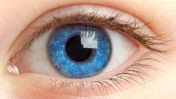 Photo free eyes, eyelashes, pupil